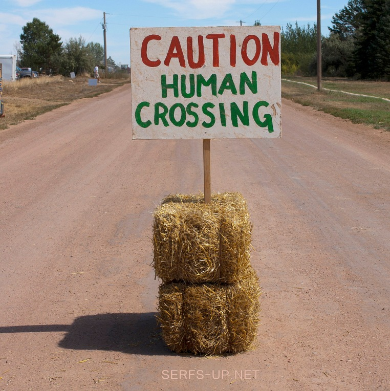 human-crossing3